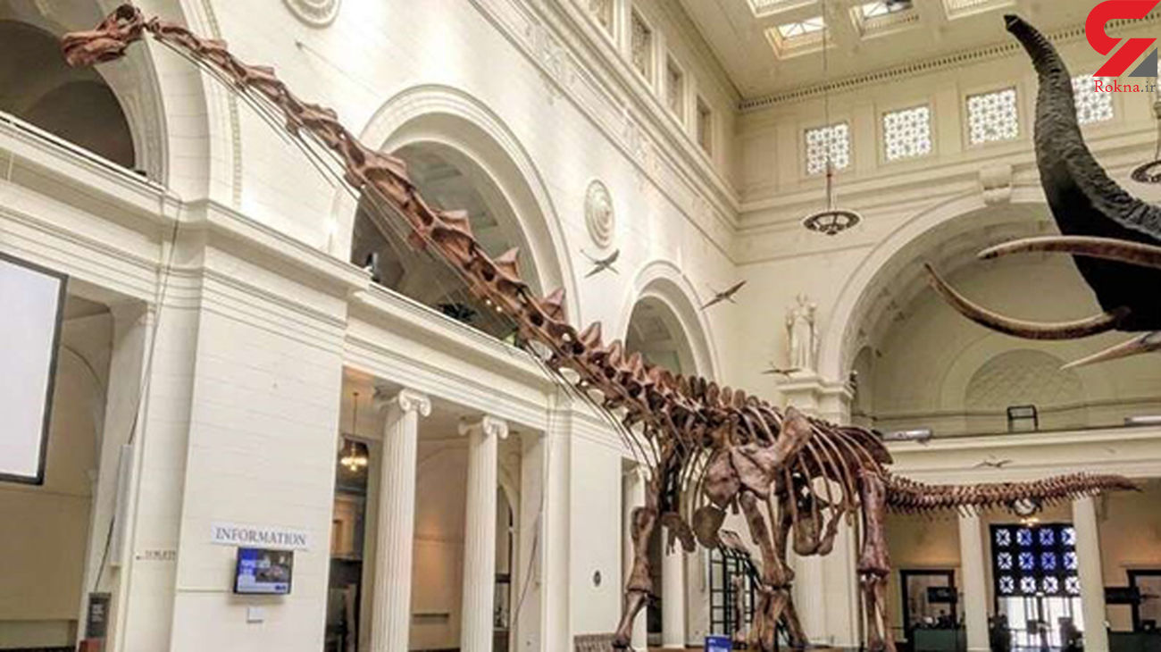 قدیمیترین دایناسور کره زمین + عکس