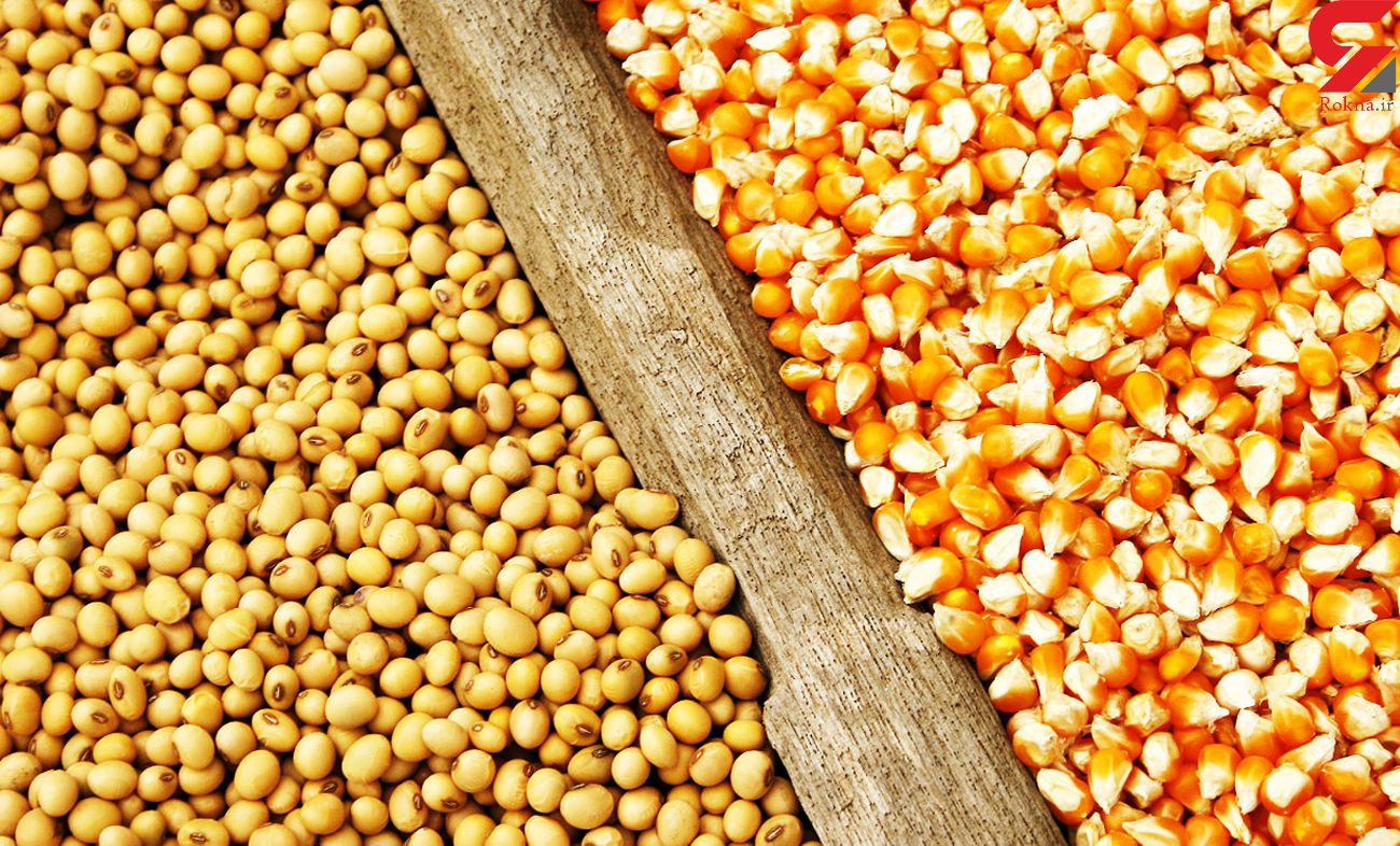 قیمت انواع نهاده های دامی و محصولات کشاورزی