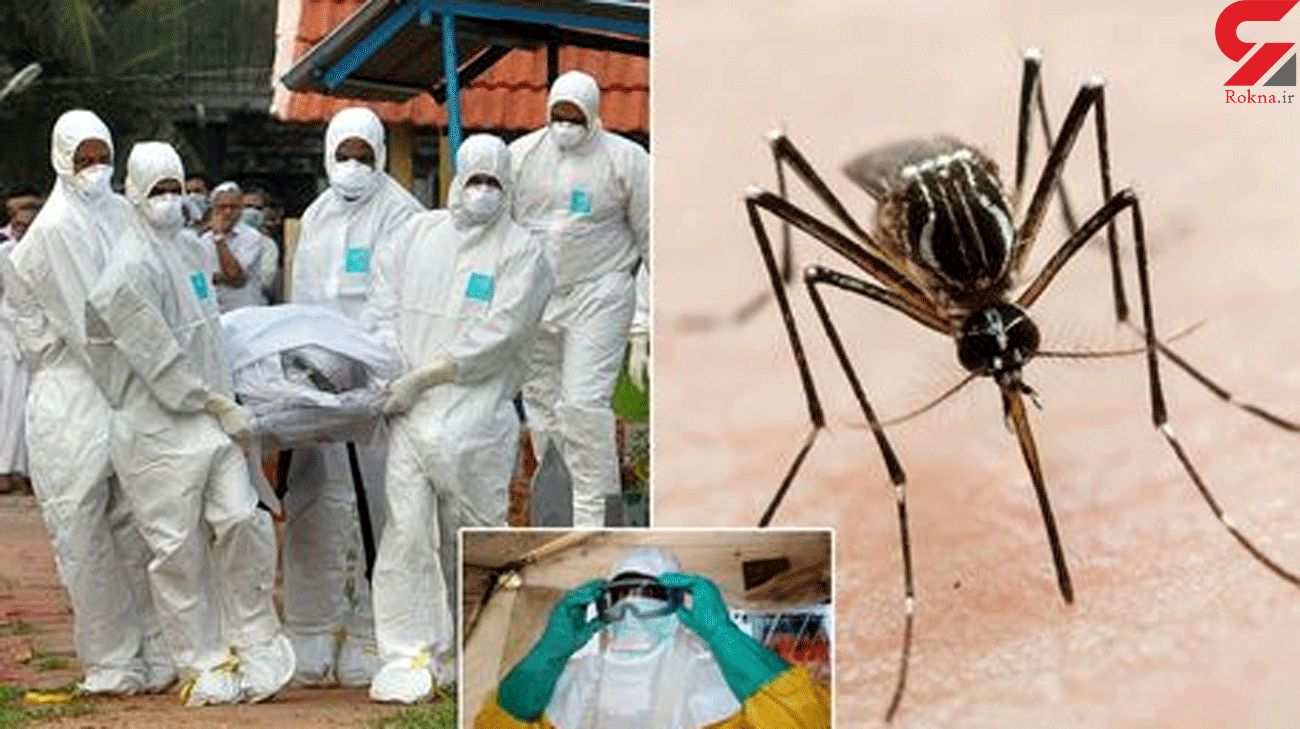 The nine dangerous bugs on WHO warning list of threats to the world - from Nipah to Zika