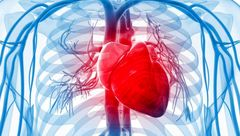 عواملی که تپش قلب ایجاد می کنند