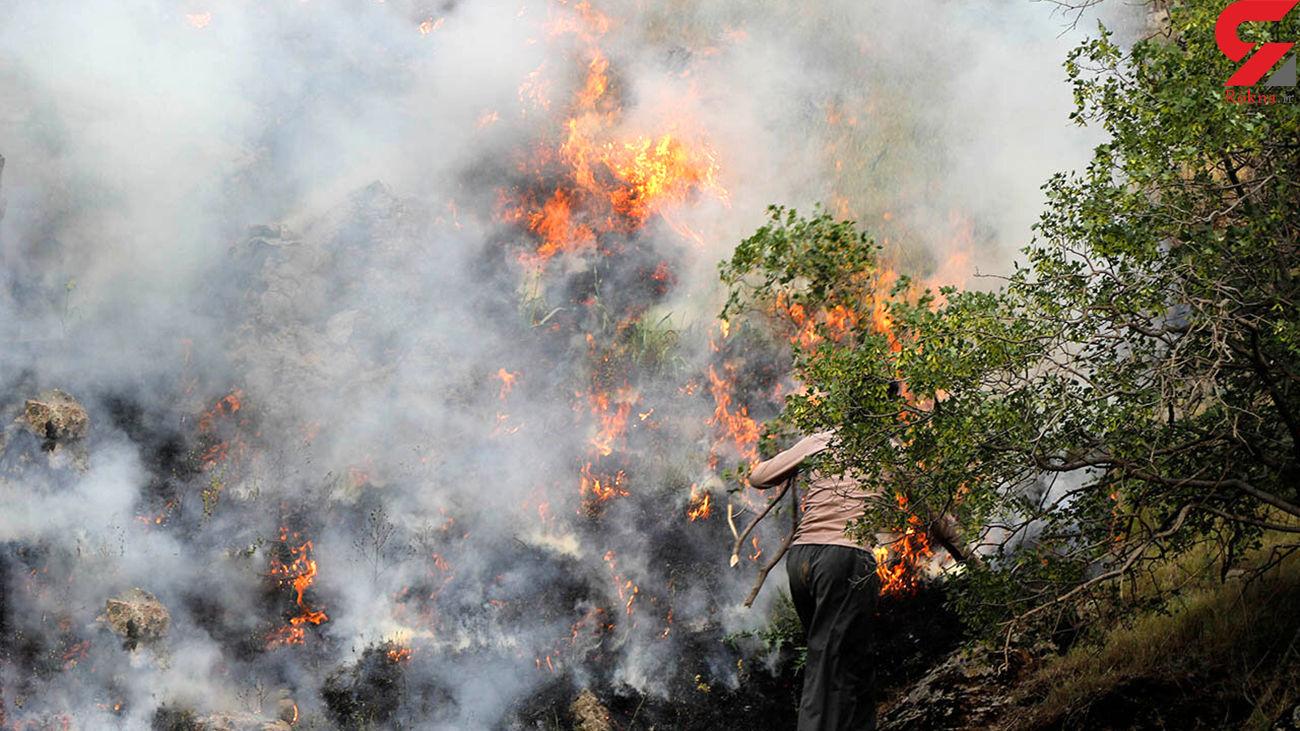 آتش سوزی 3 هکتاری در جنگل های سنندج