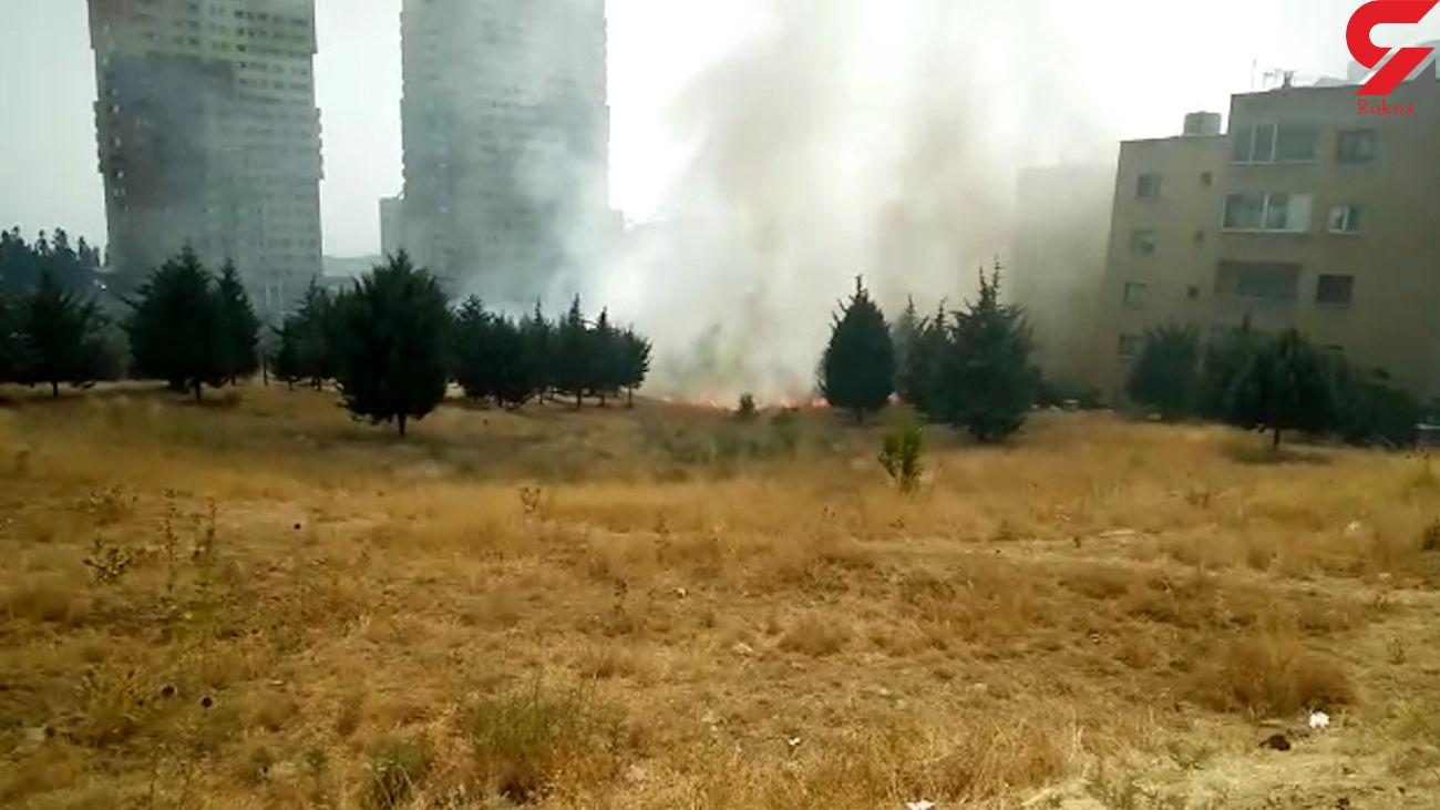 فیلم آتش سوزی وحشتناک در سوهانک / دانشگاه آزاد تهران مرکز به خطر افتاد