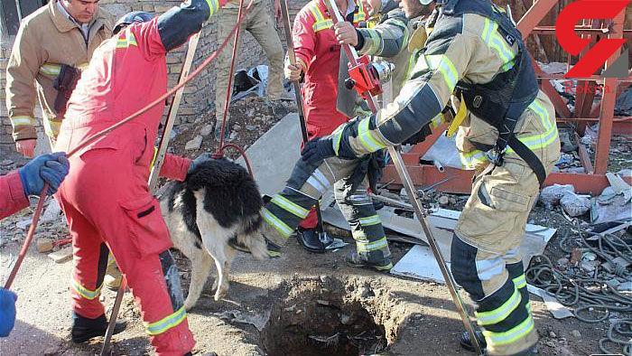 نجات سگ نگهبان از اعماق چاه + عکس