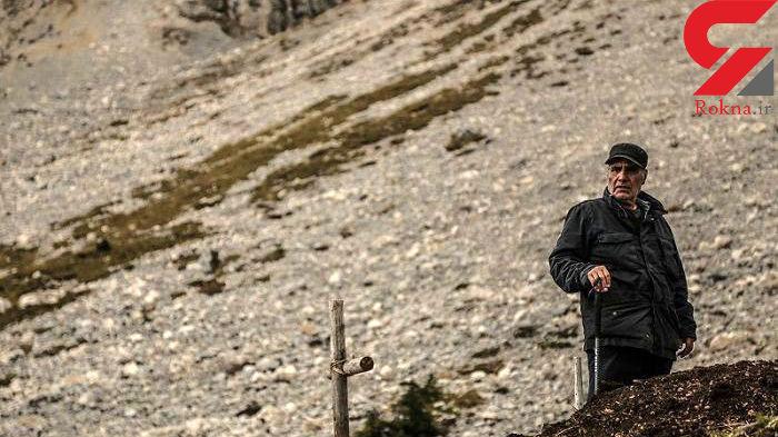 استقبال تماشاگران از فیلم جدید امیر نادری