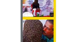 عجیب / دوستی صمیمی با 60 هزار زنبور+ عکس
