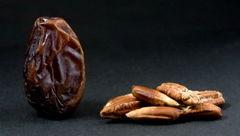 خواص ضد سرطانی هسته این میوه را  نادیده نگیرید