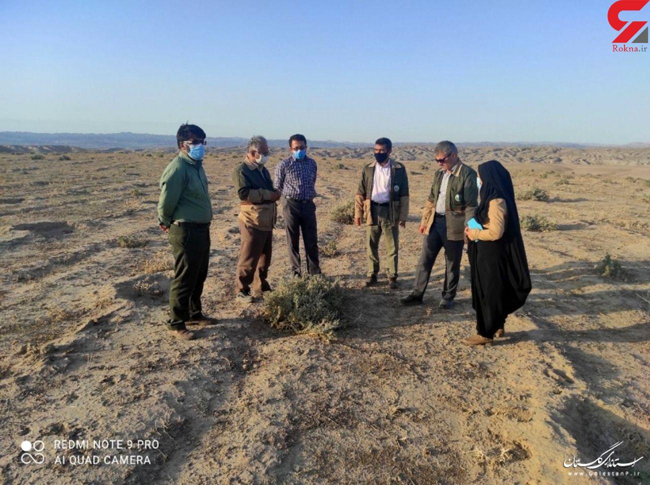 بازدید مدیرکل منابع طبیعی و آبخیزداری استان از پروژه سرشاخه گیر آق سو شهرستان کلاله