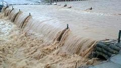 جزئیات سیل و آبگرفتگی در 8 استان/ یک نفر جان باخت؛ 700 نفر اسکان اضطراری شدند