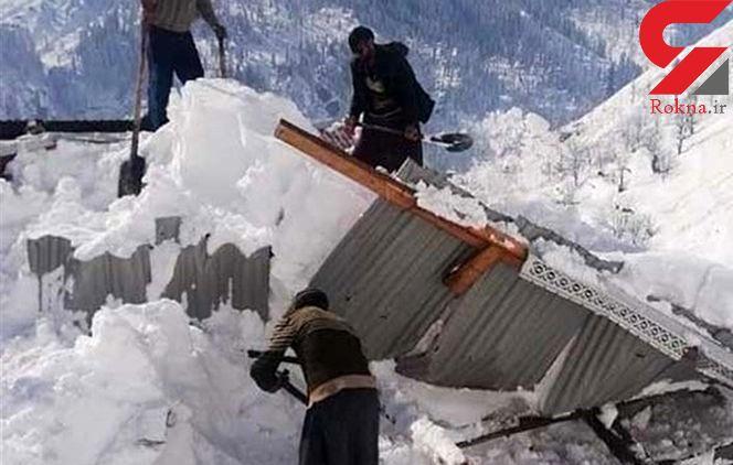 برف خانه یک خانواده کوچصفهانی را تخریب کرد