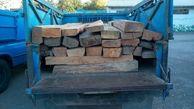 دستگیری 3 قاچاقچی چوب جنگلی در اردبیل