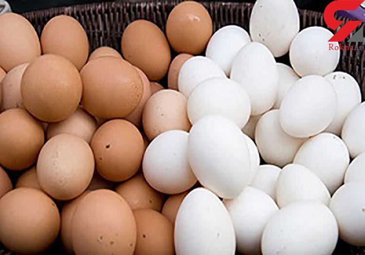 تخممرغ گران میشود؟
