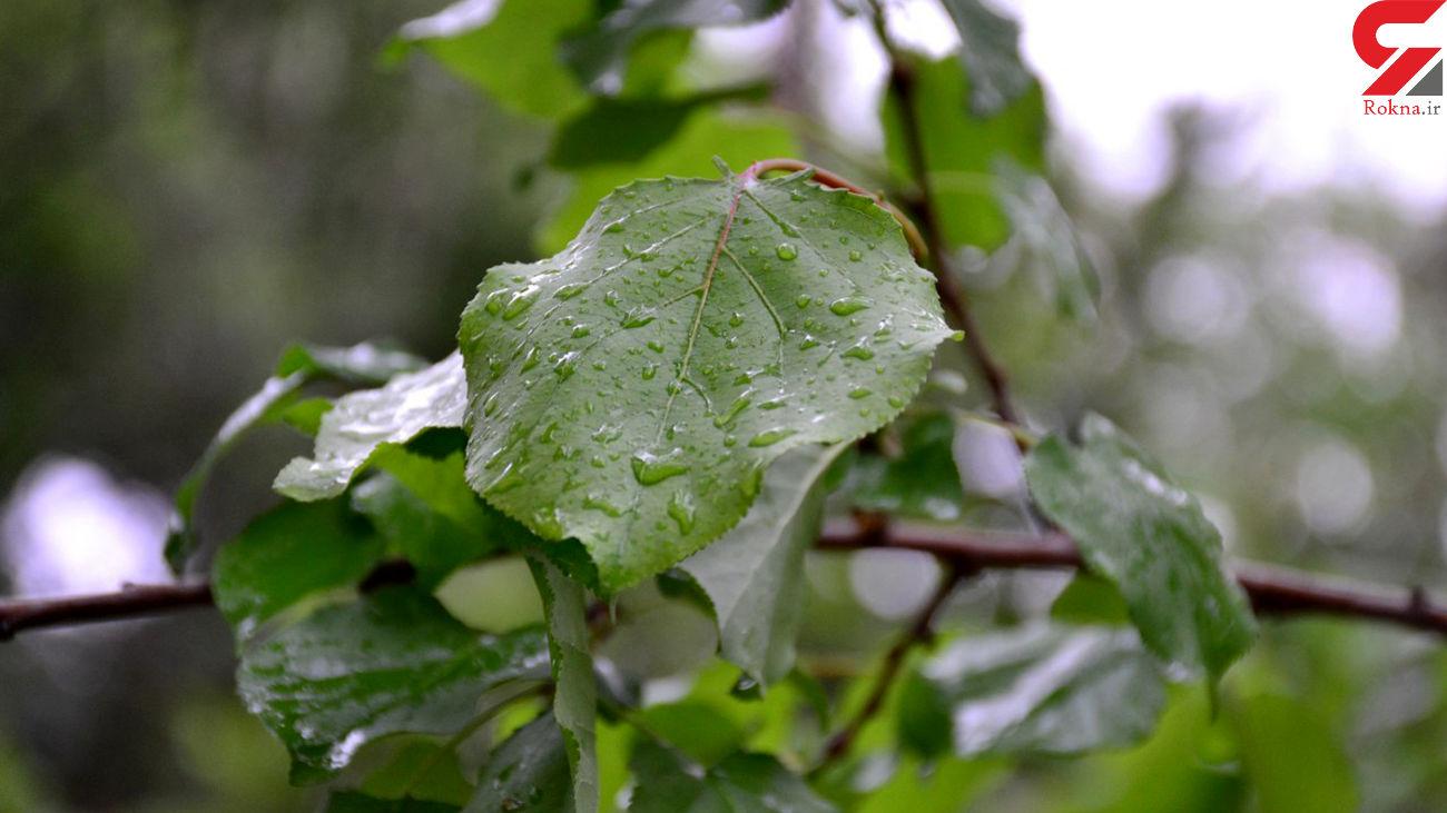 وضعیت بارش باران درایران / کدام استان ها هشدار آمیز است