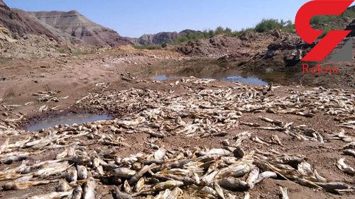 سد زدن روی رودخانه قزل اوزن بدون اجازه