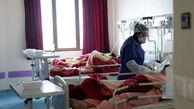 تعداد مبتلایان به بیماری کووید ۱۹ در استان مرکزی به ۹۰۶ نفر رسید