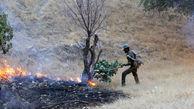 آتشسوزی در ارتفاعات دهدز