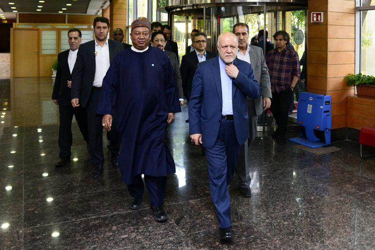 ملاقات و مذاکره وزیر نفت با دبیرکل اوپک +تصاویر