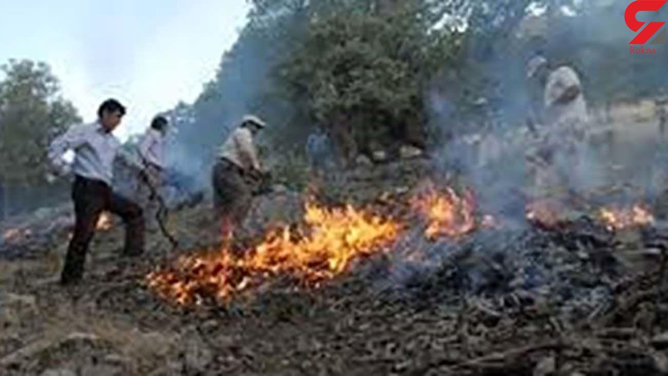 آتش سوزی جنگل های گچساران  ادامه دارد