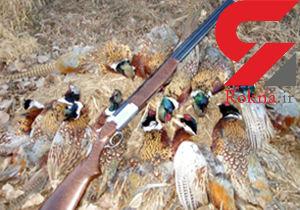 دستگیری ۱۱۵ شکارچی خلافکار در فارس