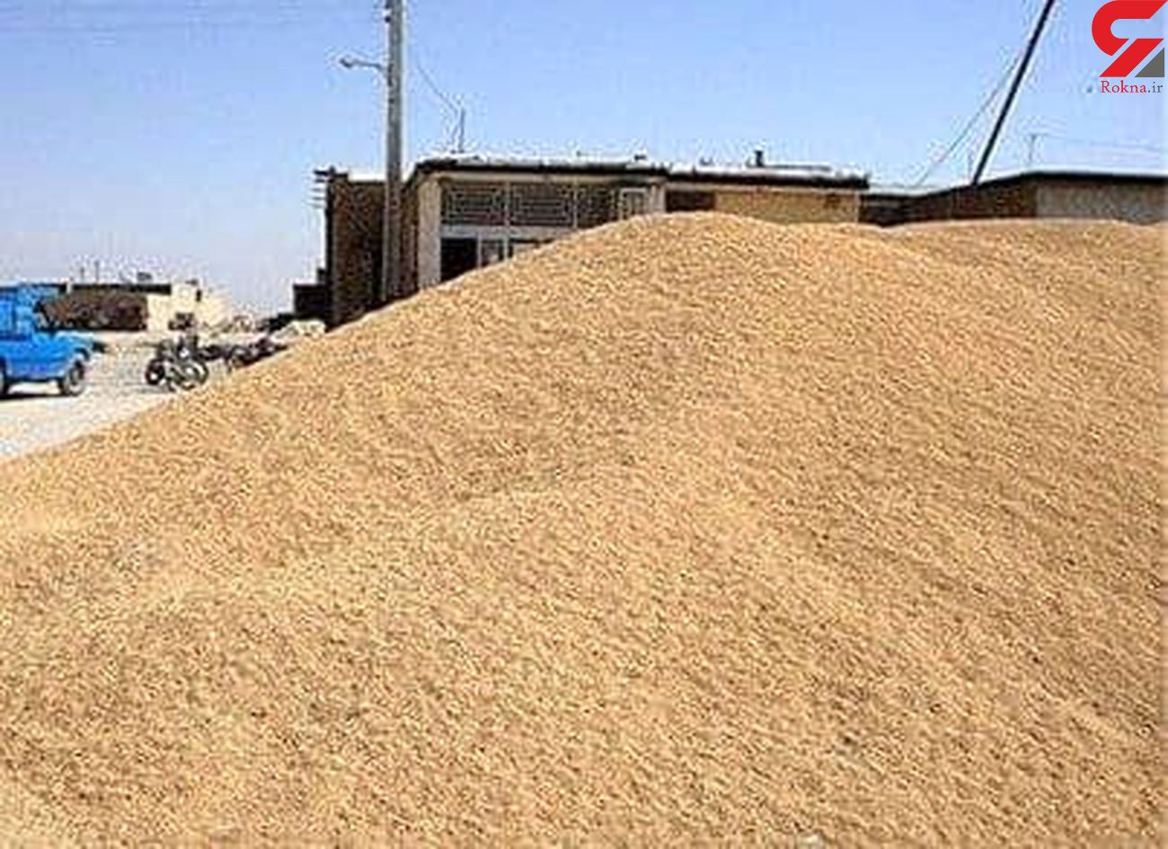 16 تن مکمل قاچاق خوراک دام در کنگاور کشف شد/ دستگیری یک نفر
