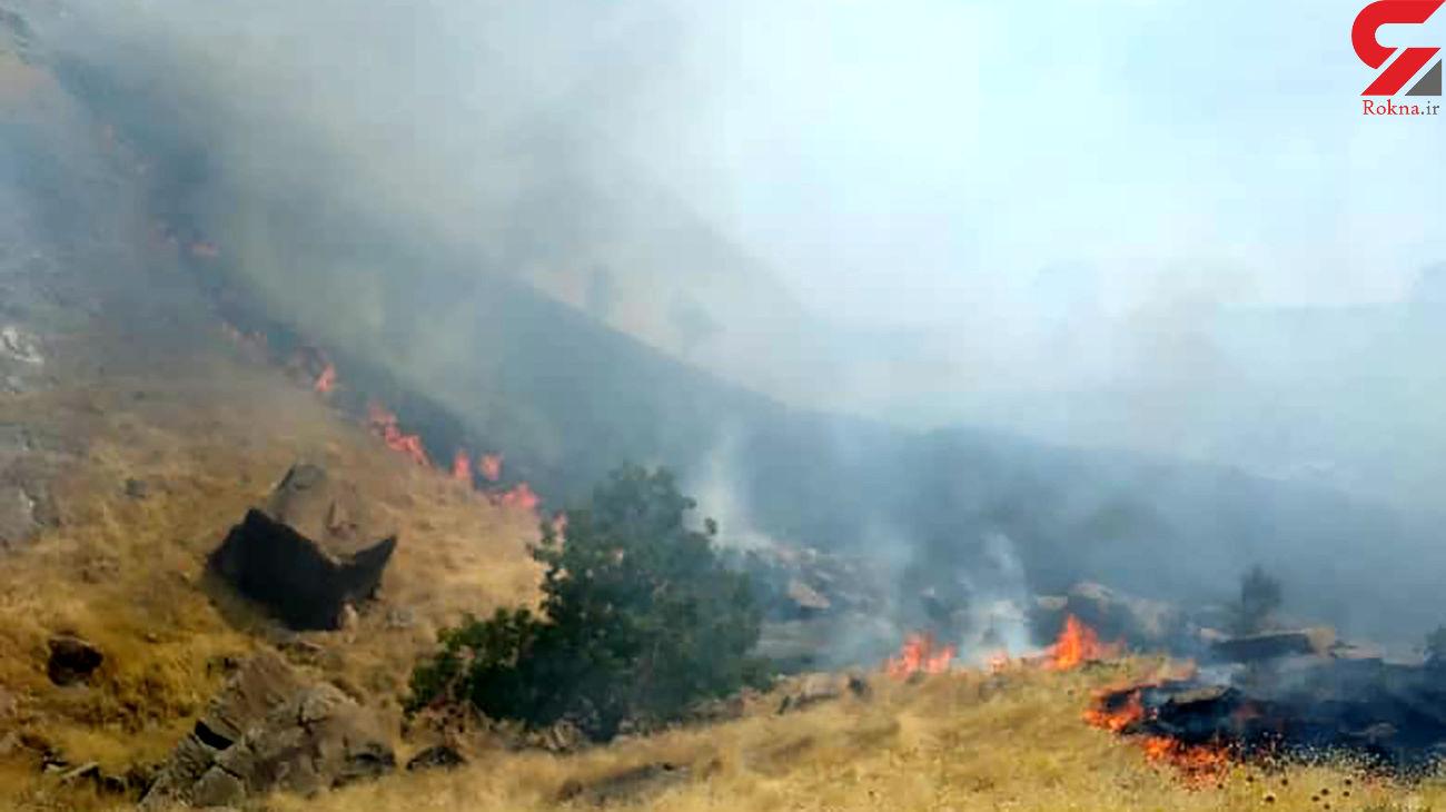 آتش سوزی پوشش گیاهی در یکی از مناطق مهاباد