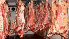 گوشت گوسفند را کیلویی 59 هزار تومان بخرید