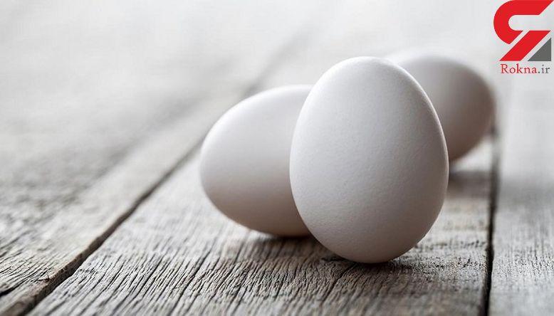 اهمیت تخم مرغ در رژیم غذایی