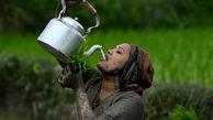 عکس هایی از جشن برنج کاری در نپال