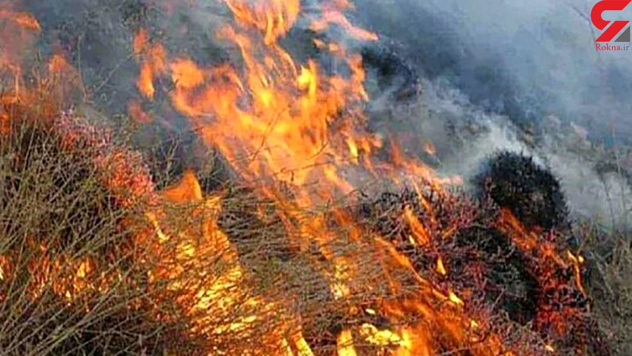 آتش در جان 26 هکتار از اراضی ملی زنجان