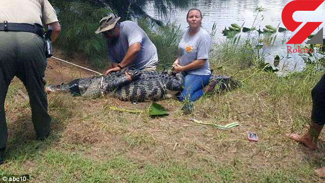 تمساح یک زن را خورد + تصاویر