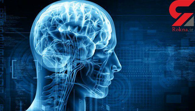 ترمیم مجدد مغز محقق شد!