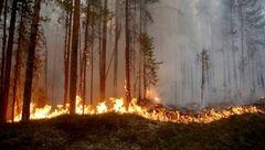 با گسترش آتشسوزیها سوئد خواستار کمک خارجی شد