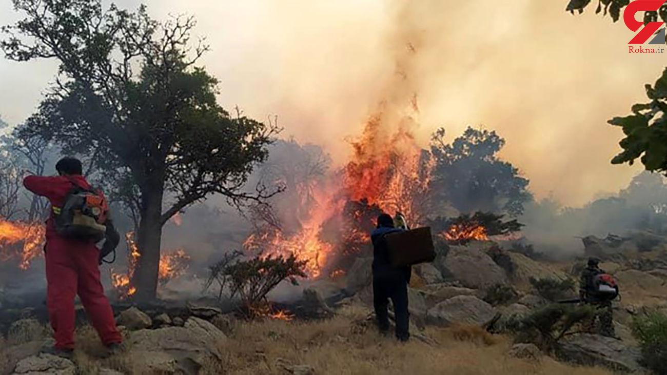 زندان برای عامل آتشسوزی منطقه شبلیز دنا