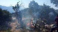 اراضی مرتعی شهرستان بافت آتش