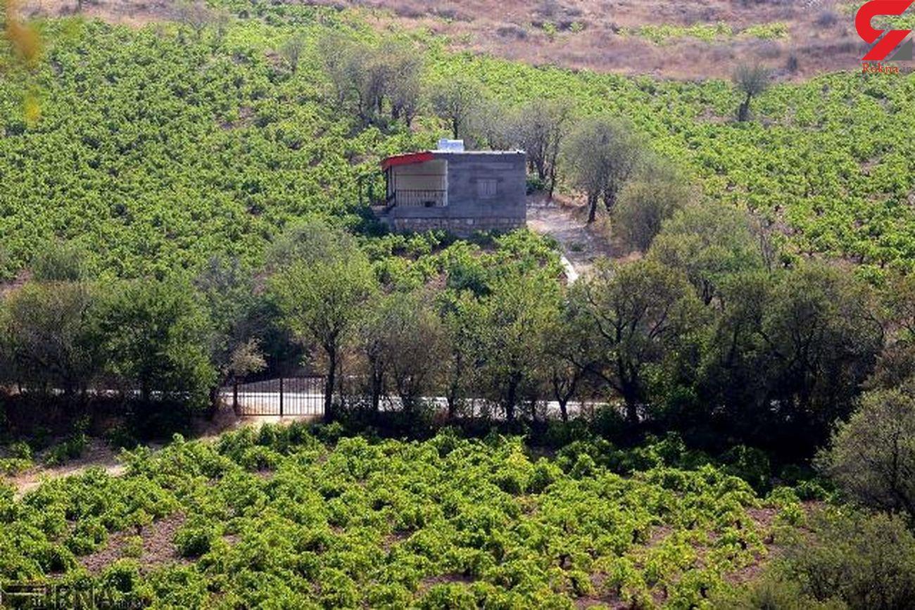 آزاد سازی بیش از ۲ هزار متر مربع از اراضی ملی شمیرانات