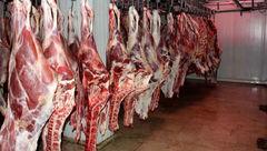 واردات روزانه 6 هزار رأس دام از رومانی/ قیمت شقه گوسفندی به 82 هزار تومان رسید