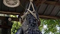 تمساح نگون بخت در تور انتقام پیرزن شکارچی + عکس