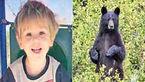 عجیب اما واقعی / خرس وحشی پسر 3 ساله را از مرگ نجات داد+ عکس
