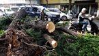 طوفان چین 11 قربانی گرفت + عکس