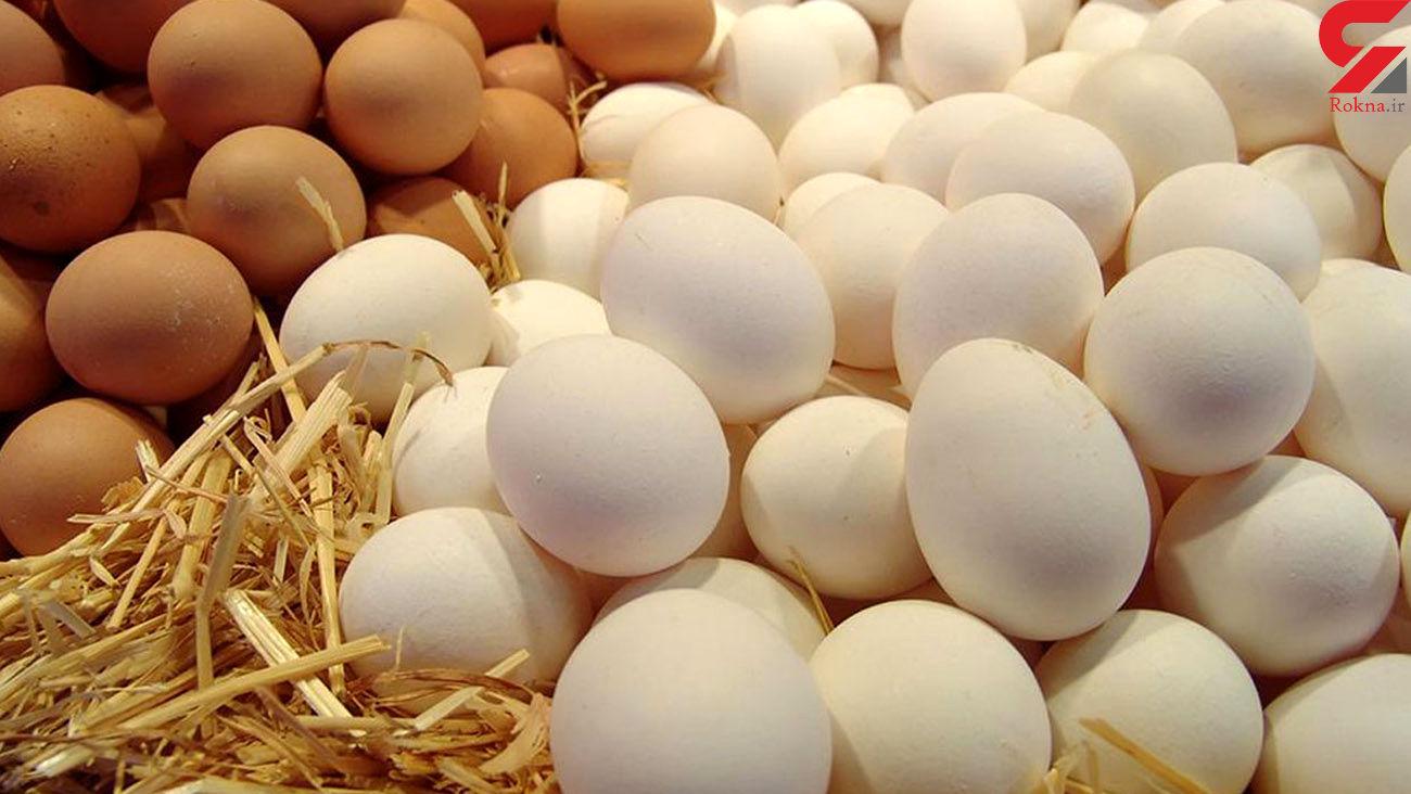 تخممرغ جایگزین گوشت شد /تورم، امنیت غذایی مردم را به خطر انداخته است
