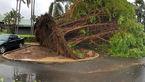 اثرات ویرانگر طوفان سهمگین در استرالیا