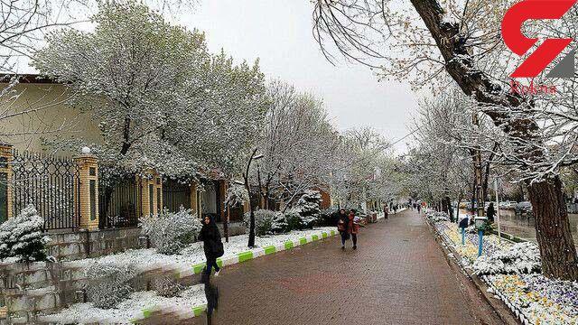 بارش برف در تهران از شنبه