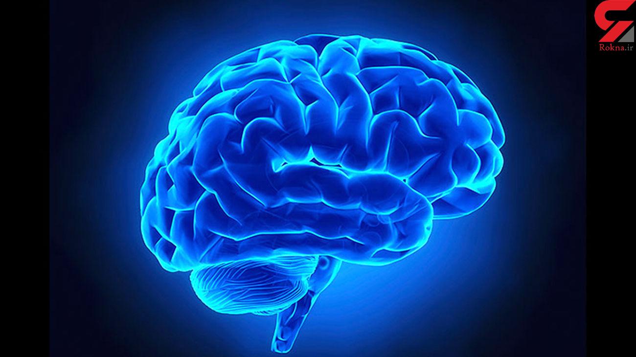 سکوت کنید تا مغزتان سالم بماند!