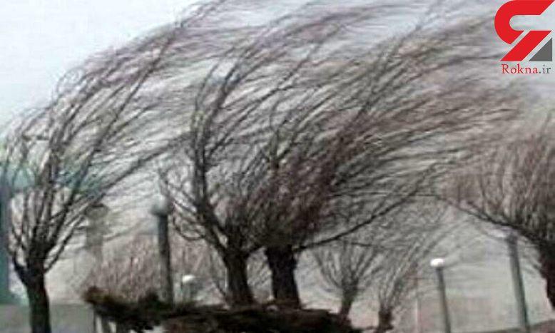 سرعت وزش باد در فرودگاه زنجان به ۶۵ کیلومتر بر ساعت رسید