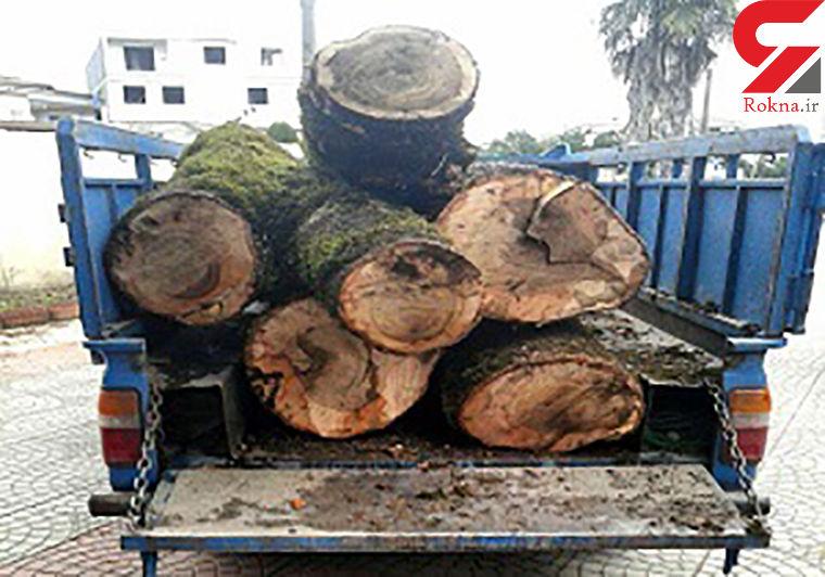 توقیف کامیونت حامل چوب قاچاق در دامغان