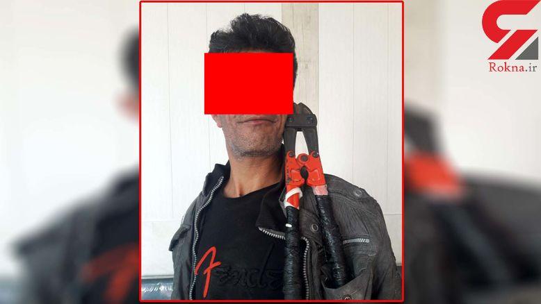 دستگیری عموبرقی آبادان در زمان سرقت کابلهای فشارقوی +عکس
