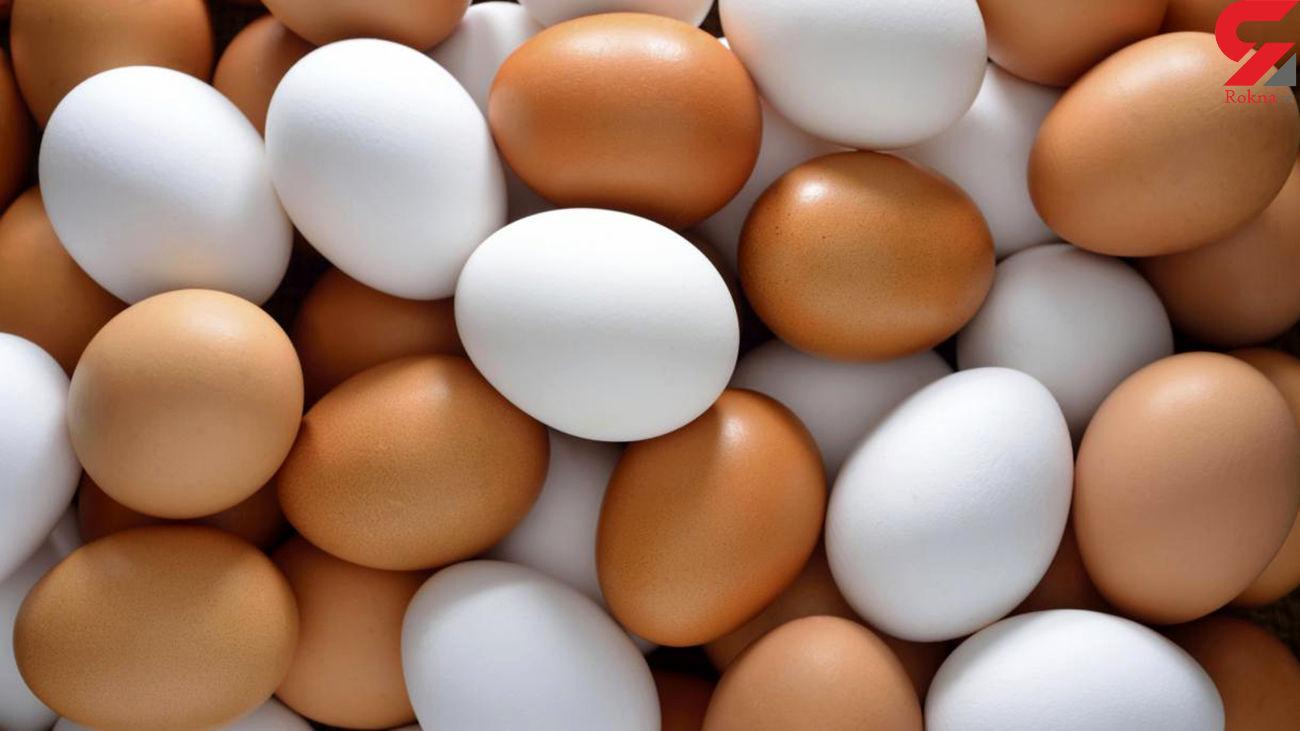 قیمت تخم مرغ در بازار امروز یکشنبه 6 مهر ماه 99 / از توزیع تخم مرغ با قیمت مصوب چه خبر ؟