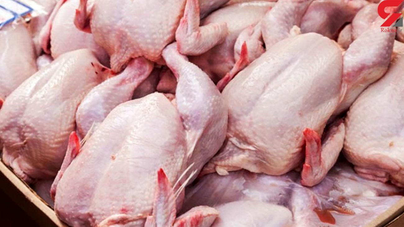 مرغ دوباره گران شد + قیمت جدید