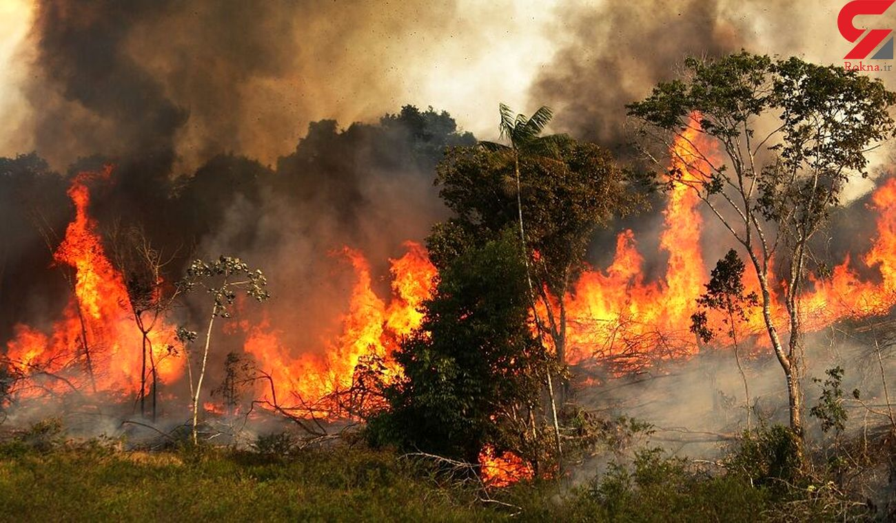 مهار آتش سوزی کوه دراک شیراز