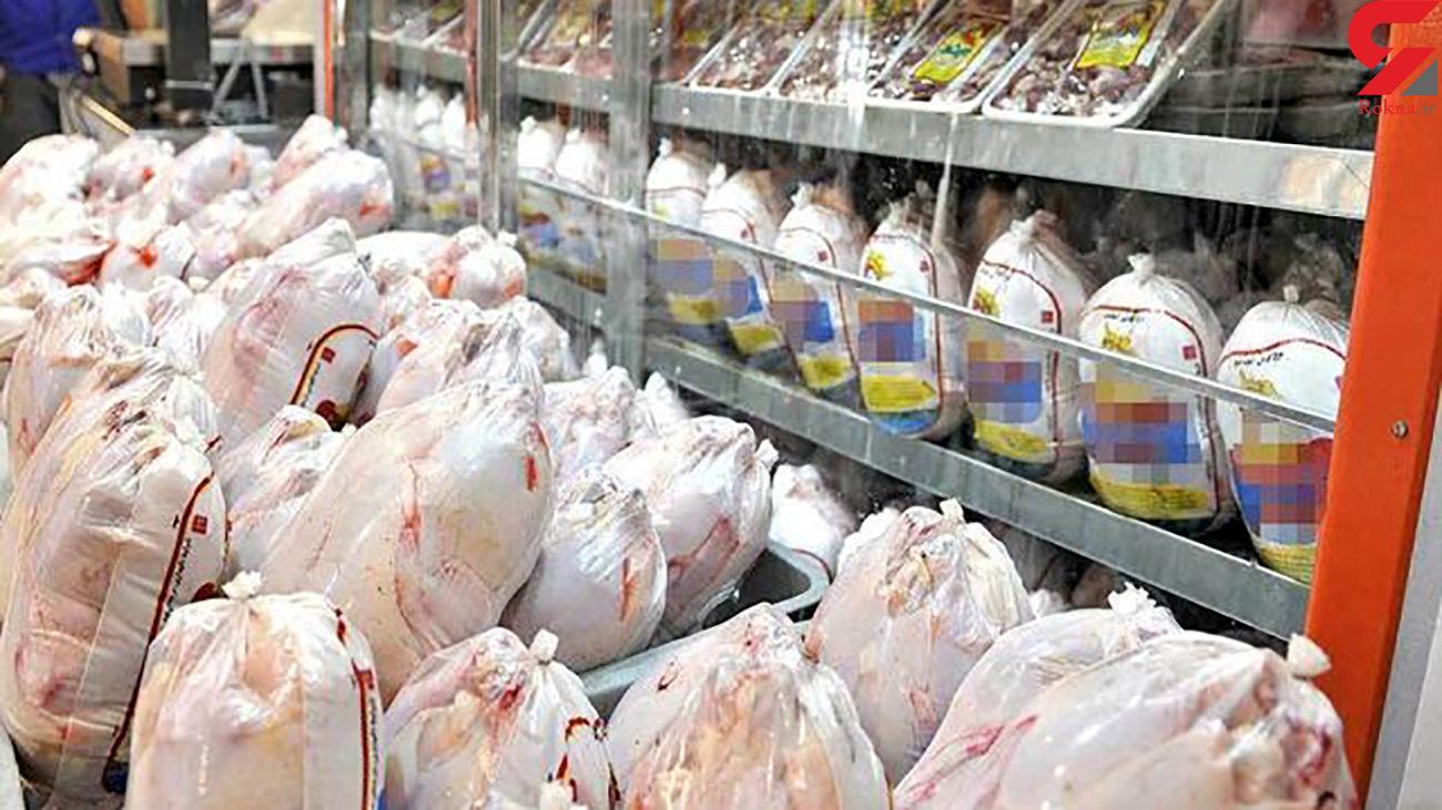 توزیع مرغ دولتی گرم هم جلو افزایش قیمت را نگرفت