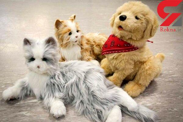 درمان آلزایمر با استفاده از سگها و گربههای رباتیک